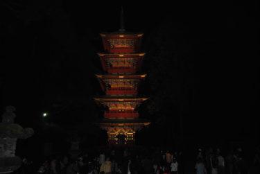 宇都宮に餃子食いに行ったらライトアップ日光2011やってた