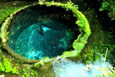 ようこそ 水の都「三島」へ