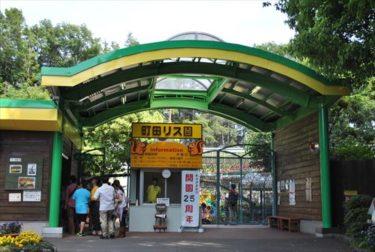 町田リス園(カツアゲロード)の秘密