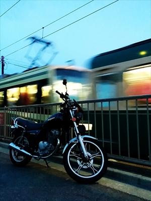 タオー来訪者 鎌倉編 その3